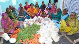Grocery Distribution for Older Women